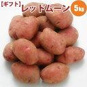 【GIFT】 じゃがいも レッドムーン L/2L混 5kg 北海道 ジャガイモ 送料無料 希少な 赤い ギフト 贈り物 ...