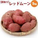 じゃがいも レッドムーン M/LM混 5kg 北海道 じゃがいも ジャガイモ 送料無料 希少な レッドムーン 赤い 訳あり お取り寄せ 食べ物 食品 通販