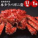 北海道直送 本タラバガニ姿 1.1kg×1尾 ほっけ2尾 タ...