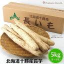 長芋5kg2L(6本〜8本)栄養豊富な長芋 送料無料 買い置きにも最適な量 安心、安全な北海道産長いも ギフ...