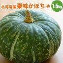 北海道産かぼちゃは甘くて美味しい!人気の南瓜【エントリー&レビューで500ptプレゼント】北海...