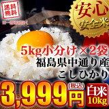 【送料無料】平成29年産 福島県中通り産 コシヒカリ 白米:10kg(5kg×2個)