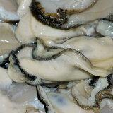 むき身牡蠣500g