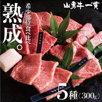 熟成飛騨牛山勇牛おまかせ5種盛り合わせ300g赤身焼肉A4/A5飛騨牛和牛牛肉冷蔵熟成肉