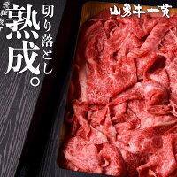 熟成飛騨牛山勇牛飛騨牛切り落とし500gすき焼きしゃぶしゃぶ切り落とし切落しA4/A5和牛牛肉冷蔵熟成肉