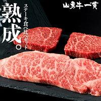 熟成飛騨牛山勇牛赤身100g×2サーロイン200gステーキ食べ比べセット赤身ステーキサーロインステーキA4/A5飛騨牛和牛牛肉冷蔵熟成肉