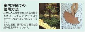 室内坪庭での使用方法