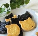 送料無料 美味しい 猫クッキー ネコクッキーセット12枚入り 猫 プレゼント 猫谷中堂 イラストペン付き