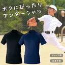 ジュニア 野球 アンダーシャツ 半袖 丸首 少年野球 ソフトボール 子供 小学生 キッズ コンプレッション インナー ウェア フィット 伸縮 メンズ レディース