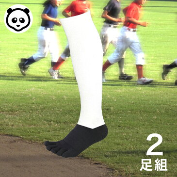 5本指 2足組 野球 パンダ アンダーソックス 2Pセット パンダソックス 靴下 少年 ジュニア 一般 大人 アンダーストッキング アンスト ハイソックス 男女兼用 メンズ レディース 野球用品 日本製