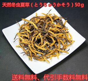 高級漢方宮廷食材!冬虫夏草(とうちゅうかそう)50g