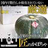 かぼちゃ 南瓜 高糖度 青果のプロが厳選!匠のかぼちゃ 1玉(約1.4kg〜2kgサイズ) 糖度センサーにて選定 いろんなレシピに使える 税込3980円以上で送料無料
