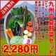 ●夏の熱?い野菜セット●トマト、キュウリ、ごぼう、ピーマン、キャ...