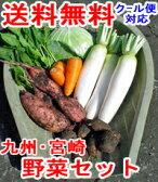 【冬の旬野菜】ヤマトの野菜セット たっぷり根菜+選べる葉物2種 ■さらに、赤卵6コおまけ【安納芋も入ります】 送料無料!九州・宮崎よりお届け