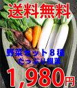 オープン記念価格でご提供!こだわりの自社生産野菜です!●安納芋入りはココだけ●ヤマトの野...