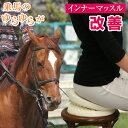 ゆら太郎 【エクササイズチェア 体幹 インナーマッスルトレー...