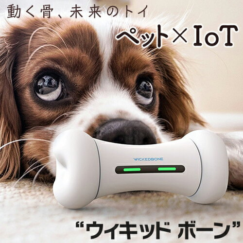 Qrosubo(クロスボ)『WICKEDBONE(ウィキッドボーン)動くペット用おもちゃ』