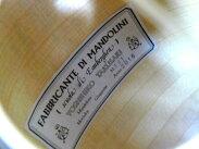 未使用【】未使用エンベルガーマンドリン田鎖ハードケース弦楽器楽器S1978469