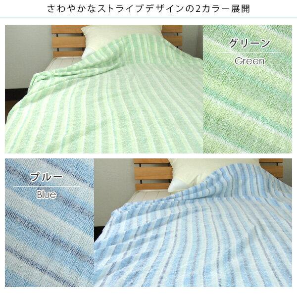 ストライプ柄/タオルケット/グリーン/ブルー