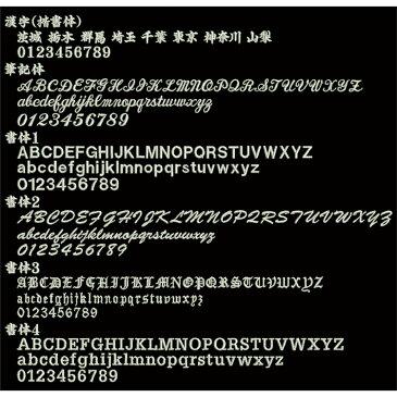 【送料無料 メール便発送】Mizuno ミズノ 野球 ミズノグローバルエリート カラー 守備用手袋 手袋 ネーム刺繍 サービス 左手用 1ejed110