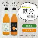 ギフト ジュース シーベリー サジー 100%果汁 北海道産 希釈タイプ無糖 300ml×9本 贈り物 セット ドリンク 飲み物 栄養 健康 送料無料
