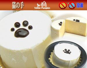 猫の肉球跡がポイントクリームチーズケーキ猫の手イエローパンプキン