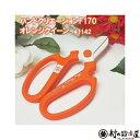 【限定色】ハンドクリエーションF170 フッ素樹脂限定色 オレンジクイーン華道家・花屋さん御用達の花切鋏、ハンドクリエーションの限定色