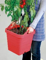 【smtb-TK】【レビューを書いて送料無料!】村の鍛冶屋オリジナルトマト栽培セットトマト栽培専用プランター18.5L+花と野菜の培養土14Lセット~トマトの色が映えるレッドのプランター!