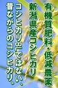 今年もおいしいコシヒカリができました!【smtb-TK】【送料無料】発送開始です!【10kg×12回継続注文限定】23年度産田辺さん家の新潟県産コシヒカリ100%有機質肥料100%栽培・低減農薬 コシヒカリ10kg(4,950円送料無料)