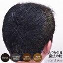 シークレット プラス 50g 【約100回分】【ブラック|ナチュラルブラック|ダークブラウン|ライトブラウン】よりご選択【薄毛|ハゲ|円形脱毛症|隠し|パウダー|増毛|男女兼用|SECRET+|あす楽】