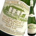 ドメーヌ・マルタン・ミュスカデ・セーブル・エ・メール・シュール・リー・ヴィエイユ・ヴィーニュ | ワイン 結婚祝い 還暦祝い 内祝い 誕生日プレゼント 60代 お酒 プレゼント 出産内祝い ギフト わいん 白 酒 白ワイン フランス 父 お返し