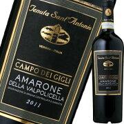 アントニオ デッラ・ヴァルポリチェッラ・カンポ・デイ・ジーリ プレゼント プチギフト 赤ワイン
