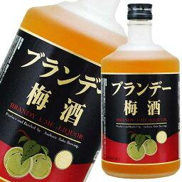 ブランデー梅酒 720ml [麻原酒造 埼玉県] 果実酒 送料無料(本州のみ)