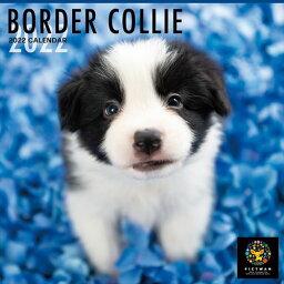 2021/09/18発売予定! ボーダー・コリー PICTWANカレンダー DOG 2022年カレンダー 22CL-50004