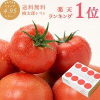 母の日ギフト2019トマト約1kg安心安全農家直販ハウス桃太郎トマトヨダファーム採れたてを発送
