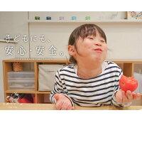 トマト約1kg安心安全農家直販ハウス桃太郎トマトヨダファーム5月上旬発送予定