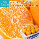 デコポン 優品 露地栽培 約3kg 10〜12玉 JAグルー...