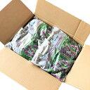 ヘアリーベッチ種子 20kg 送料無料