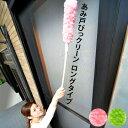 Seiei 清水産業 ロングタイプ1本取替え式あみ戸びっクリーン網戸用掃除ブラシ サッシの掃除 水でこするだけ セイエイ