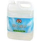 緑の魔女 ランドリー 洗濯用洗剤 5L【送料無料】【smtb-MS】【RCP】