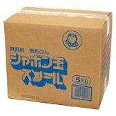 シャボン玉石けん スノール 洗濯用粉せっけん 5kg【送料無料】【smtb-MS】