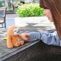 【送料無料】WOODYO'TIMEMIMEFRIENDS(マイムフレンズ)SLOTHナマケモノモノマネおしゃべりぬいぐるみ