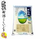 令和元年産 一等米 米杜氏 新潟県産 こしいぶき 5kg 白...