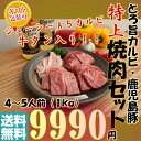 【 A5ランク 黒毛和牛 】とろ旨 カルビ + 牛タン + ...