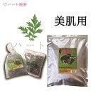 【無農薬栽培-3年熟成よもぎ】よもぎ蒸し材料-美肌用【50g×10袋】(10回分)