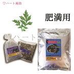 【無農薬栽培-3年熟成よもぎ】よもぎ蒸し材料 -肥満用【50g×10袋】(10回分)