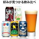 クラフトビール 初心者におすすめ!入門書付き! ビール クラ...