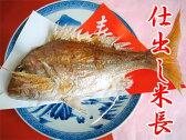 【送料無料】【鯛焼き】2.5kgサイズ用 祝い事にはかかせない結婚式や100日のお祝いなどに焼き鯛/焼鯛があれば華やかになる!瀬戸内の明石から直送です!【約2.5kg特大サイズ生活け鯛を使用】