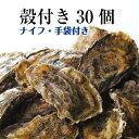 【牡蠣 殻付き 広島産 30個】 広島牡蠣生産者米田海産が育てた殻付き牡蠣 生牡蠣 加熱用