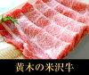 お試し米沢牛肩ロースすき焼き用300g【送料込】